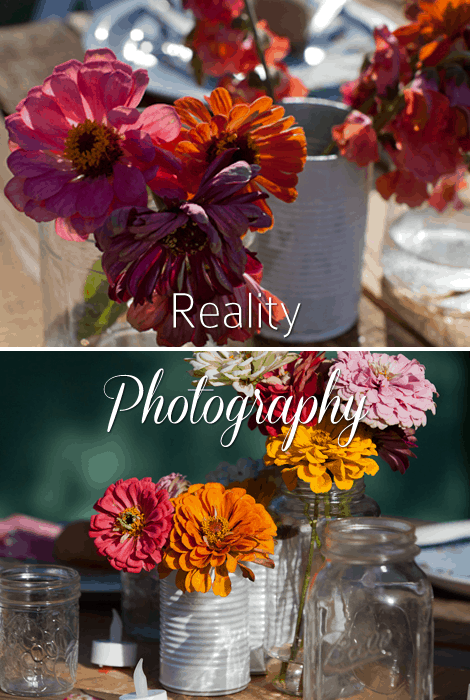 Reality Photography Centerpieces