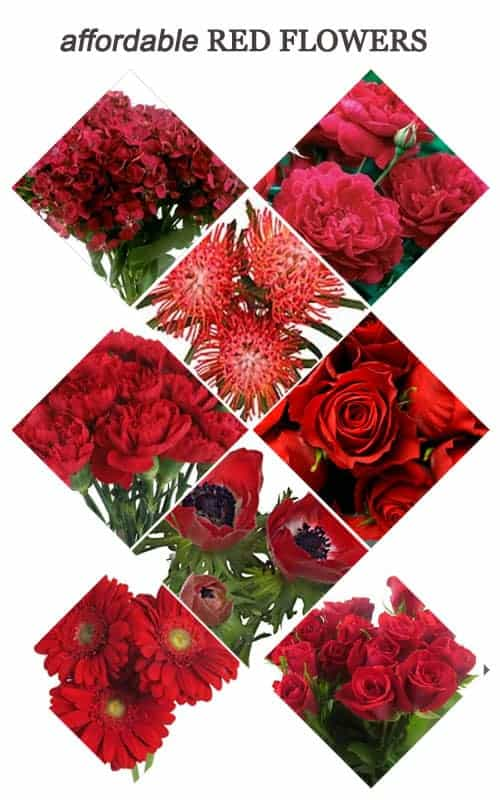 Affordable Red Flowers for Your Wedding