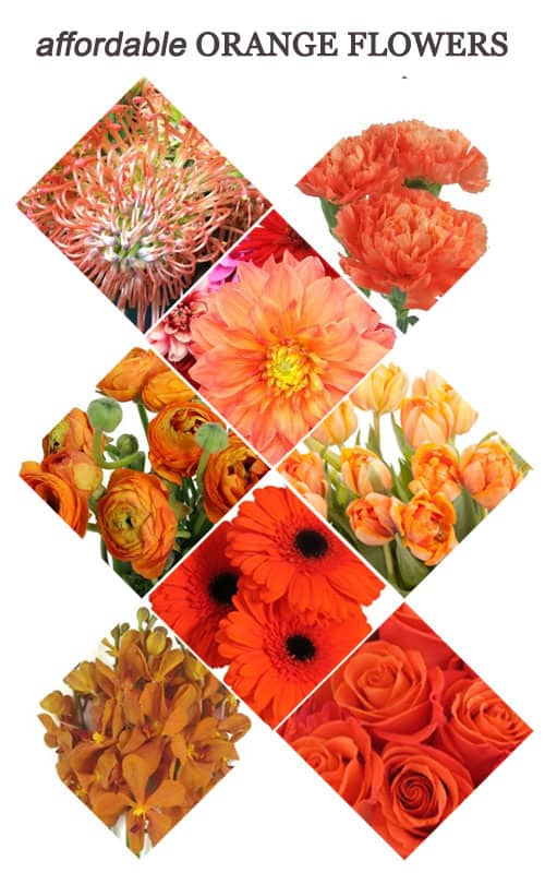 Affordable Orange Flowers for Your Wedding #wedding #ceremony #bouquets #orange #flowers #reception #centerpieces