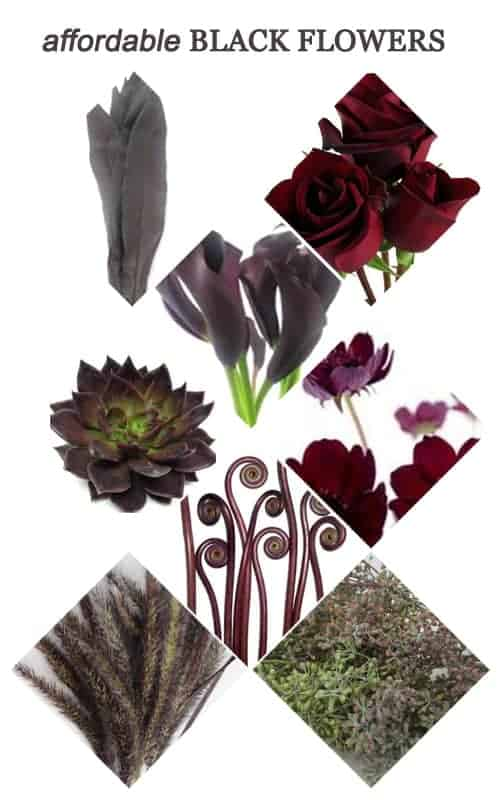 Affordable Black Flowers for Your Wedding #Halloween #wedding #flowers #black