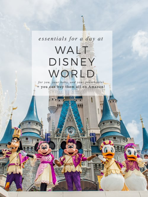 Stop everything you're doing right NOW! You have to check this post out - Essentials For You, Your Baby, and Your Preschooler For A Day At Walt Disney World!