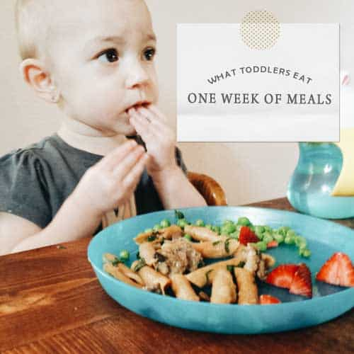 San Antonio lifestyle blogger, Cris Stone, recorded and is sharing the meals she served her toddler for one week.