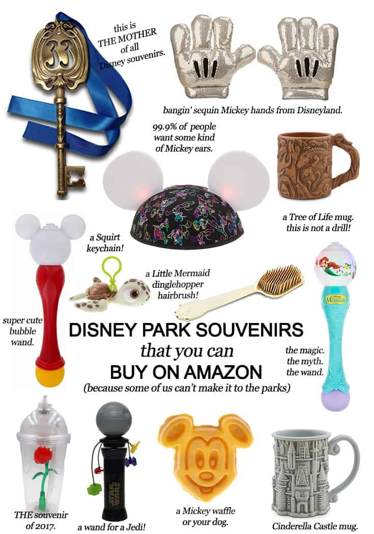 Disney Park Souvenirs that you can buy on Amazon (because some of us can't make it to the Parks)