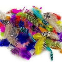 120 Pieces of Colorful Spotted Feathers